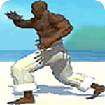 Image: Capoeira Fighter